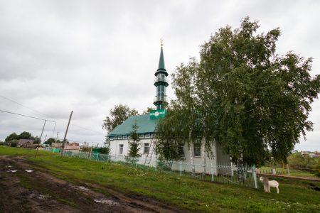 Мечеть в селе Денискино (6 of 8)