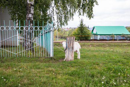 Мечеть в селе Денискино (7 of 8)